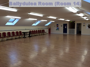Ballydulea Room Room 14 for Slider