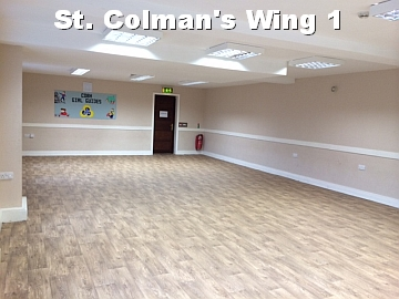 St. Colman's Wing #1  white text
